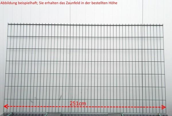 Doppelstab Zaunfeld / Grün / 123cm Höhe / 250cm Breite / Stärke 6/5/6mm