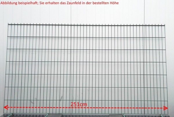 Doppelstab Zaunfeld / Grün / 163cm Höhe / 250cm Breite / Stärke 6/5/6mm