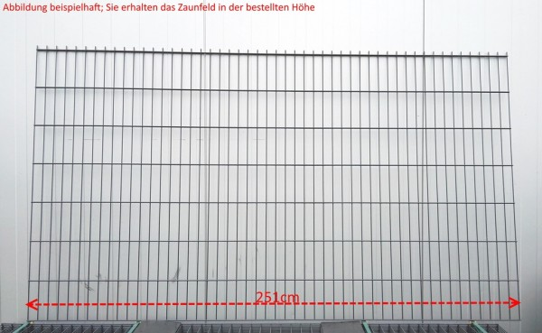 Doppelstab Zaunfeld / Anthrazit / 203cm Höhe / 250cm Breite / Stärke 6/5/6mm