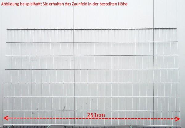 Doppelstab Zaunfeld / Verzinkt / 143cm Höhe / 250cm Breite / Stärke 6/5/6mm