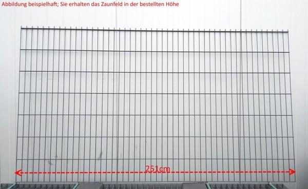Doppelstab Zaunfeld / Anthrazit / 123cm Höhe / 250cm Breite / Stärke 6/5/6mm
